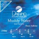 Muddy Water image